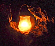 9th Jul 2015 - Amber Glow