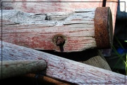 7th Jul 2015 - Wood and Rust