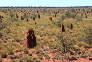 11th Jul 2015 - Day 16 - Termite Mounds