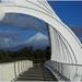 Te Rewa Rewa Bridge by dide
