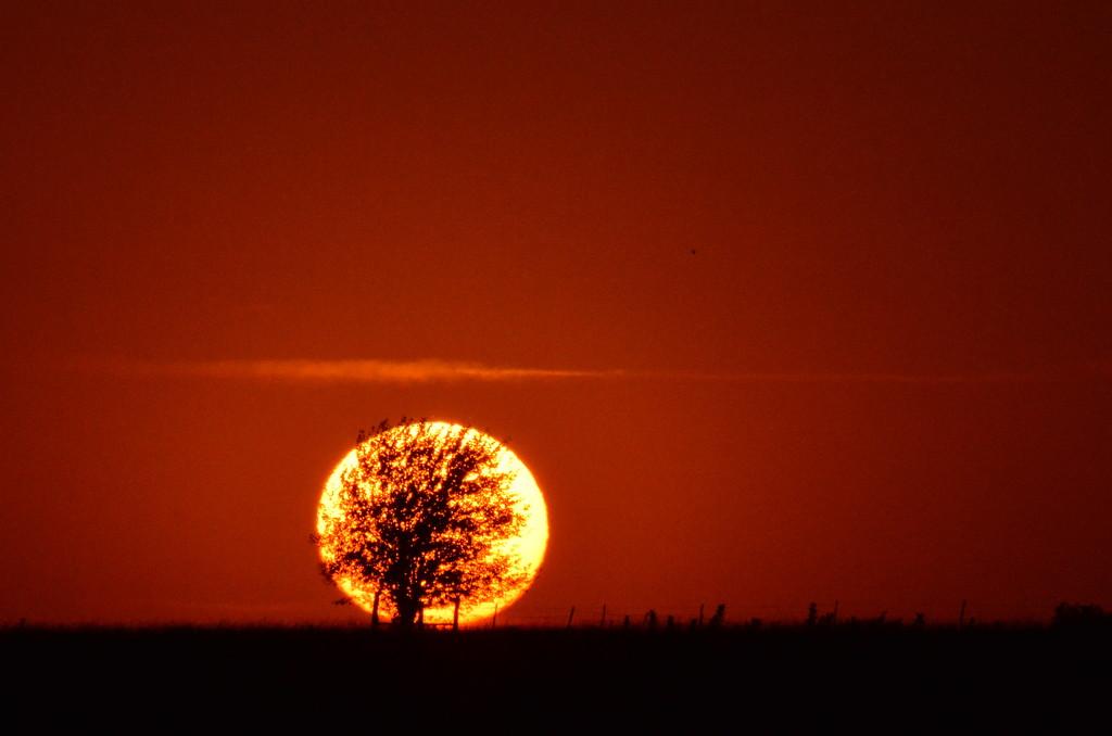 A Little Sunset Greeting from Kansas by kareenking