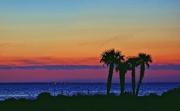 17th Jul 2015 - St. George Island Sunset