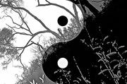 5th Dec 2018 - Yin yang