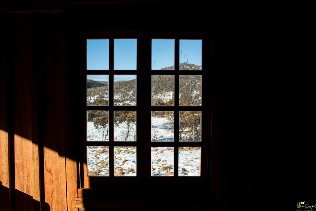 Through the rectangle window  by nicolecampbell