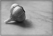 19th Jul 2015 - Garlic Beauty