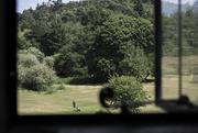 23rd Jul 2015 - From a Window...