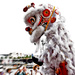 lion dance by annied