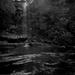 In shadows by peterdegraaff