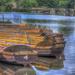 Derbyshire Row Boats