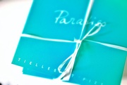 30th Jul 2015 - This is not a Tiffany gift....