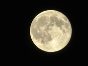 31st Jul 2015 - Blue Moon 108° East in Lunenburg NS