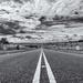 The Road to Porton Down