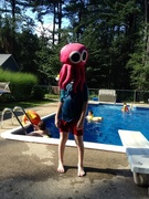 2nd Aug 2015 - When Jellyfish Attack