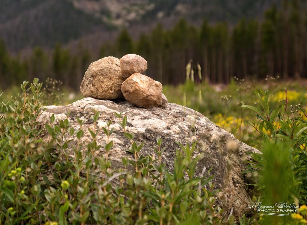Rocks by lynne5477