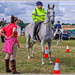 Volunteer Police Rider,Northamptonshire