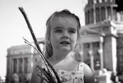 4th Aug 2015 - Collecting Sticks at the Capital Building