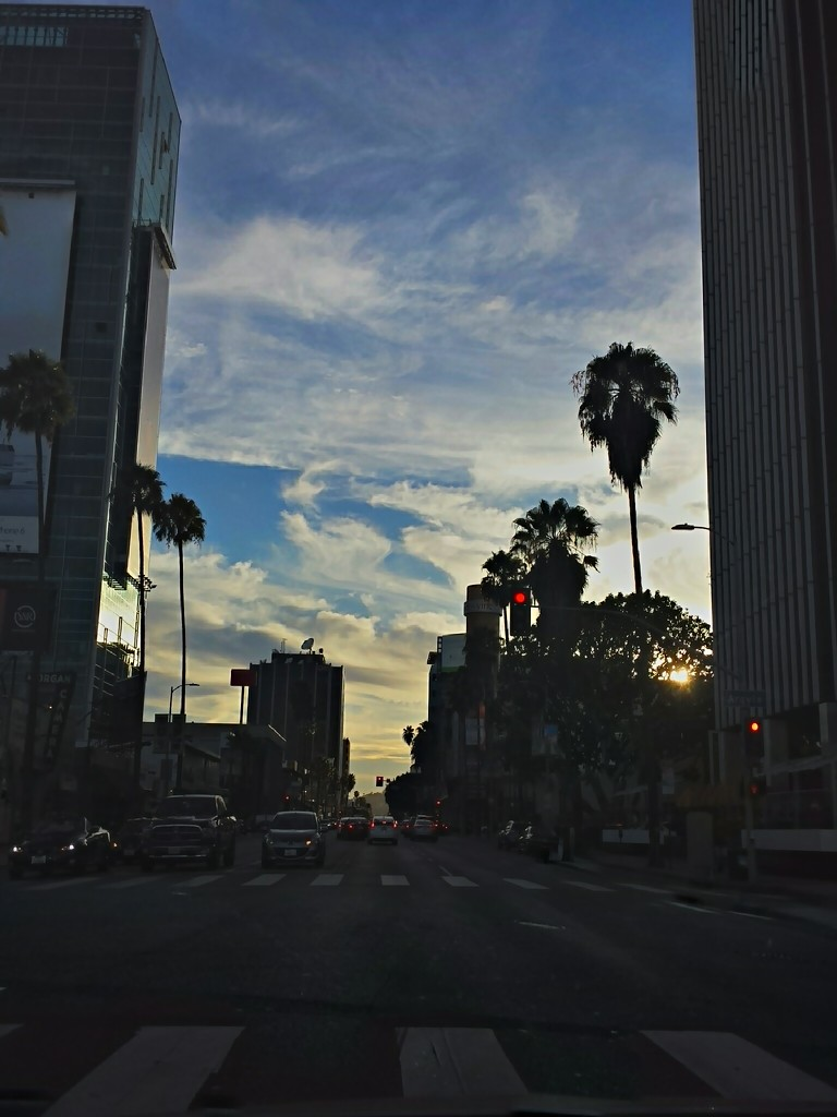 Sunset Blvd. Hollywood by bambilee