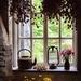 Summer through a window by swillinbillyflynn