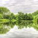 Reflections by tonygig
