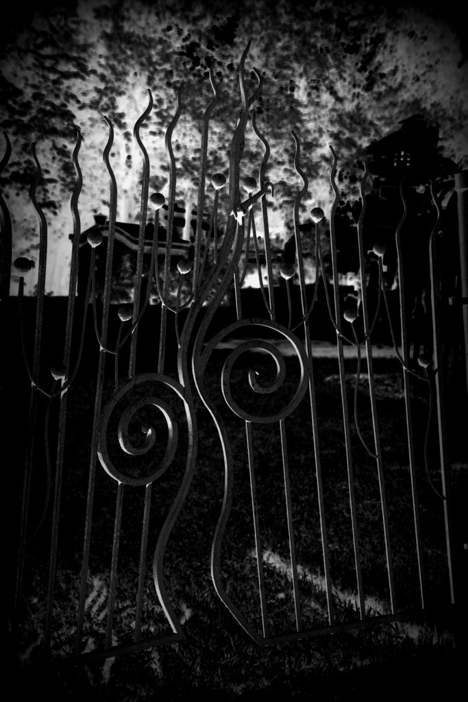 What mysteries lie behind the iron gate by susale