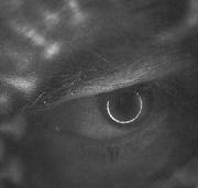 9th Aug 2015 - Floyd-esque