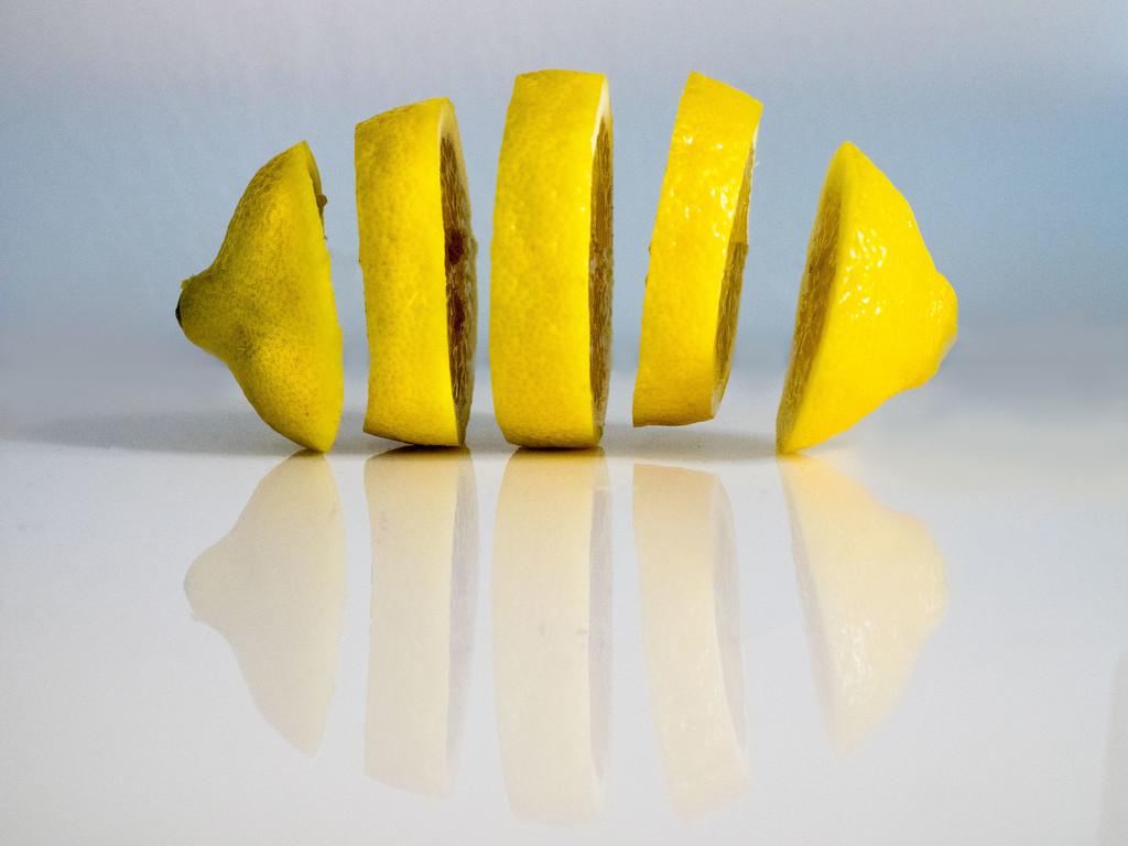 Lemon Slices by rosiekerr