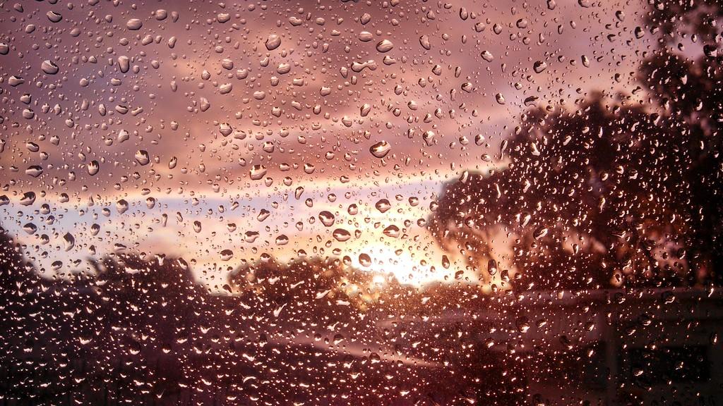 Through the Window by leestevo
