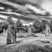 Standing Stones at Monteneuf by vignouse