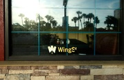 22nd Aug 2015 - Wings