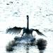 Swan landing.... by snowy