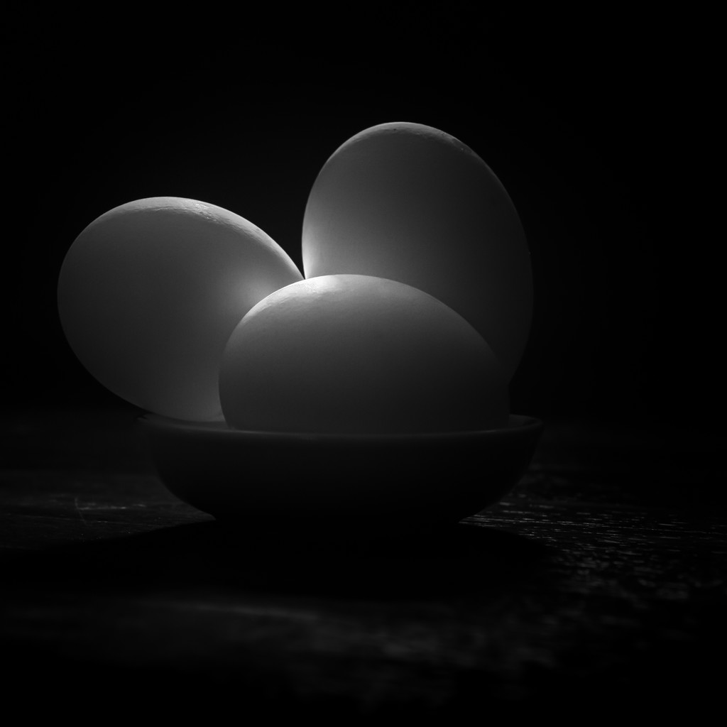 sometimes...  an egg is just an egg... by northy