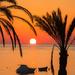 sunrise by callymazoo