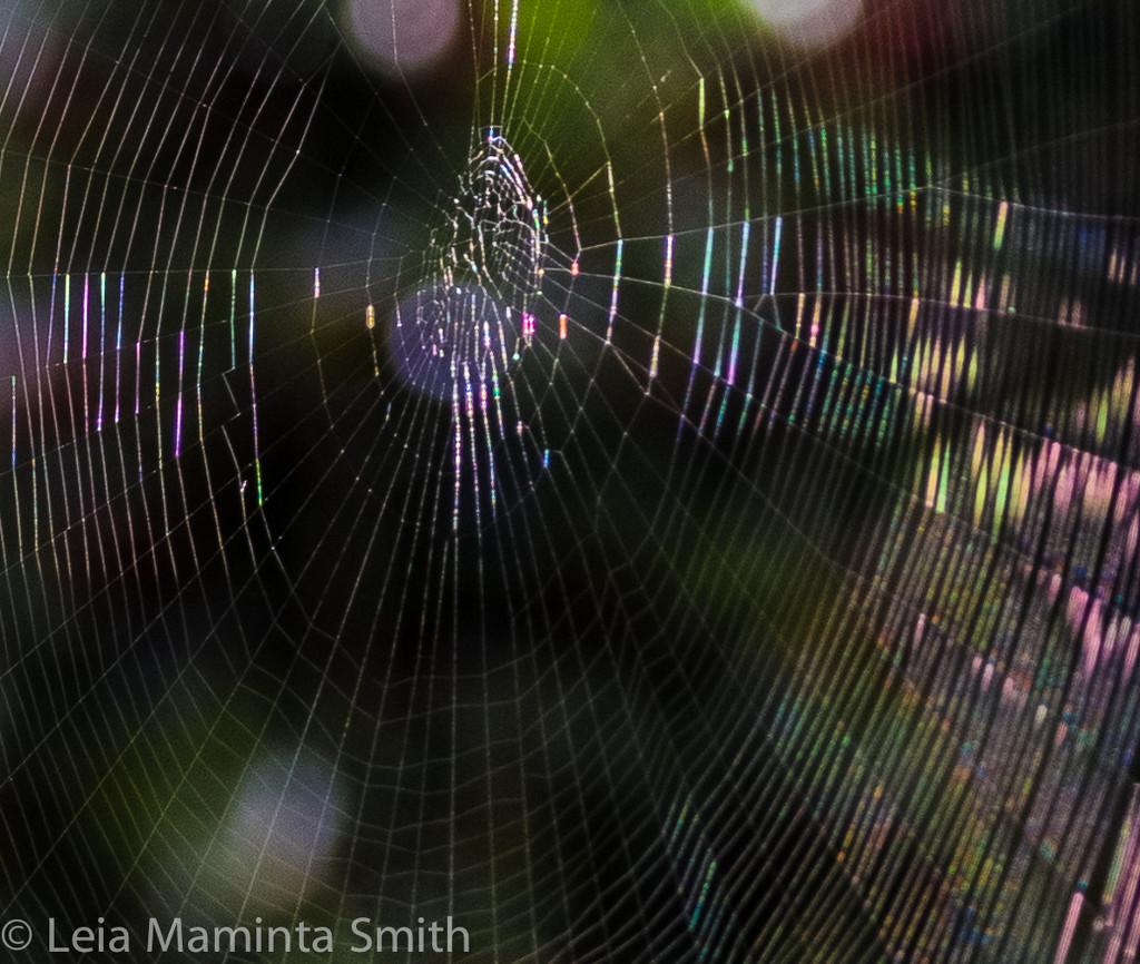 Spectral web by princessleia