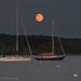 Full moon rising by mccarth1