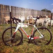 28th Aug 2015 - New bike day