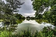 1st Sep 2015 - The Pond