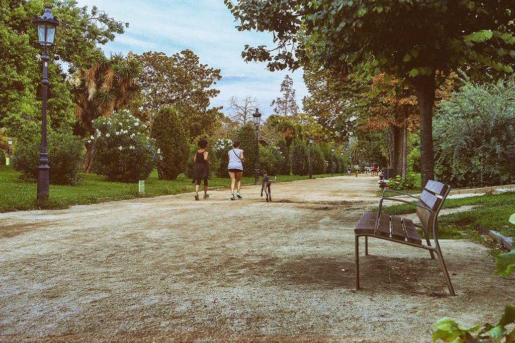 Trees - Parc de la Ciutadella by jborrases