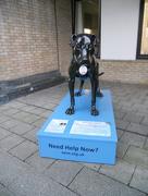 3rd Sep 2015 - A Dog Named 'Sane'