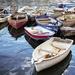 Rowing boats by swillinbillyflynn