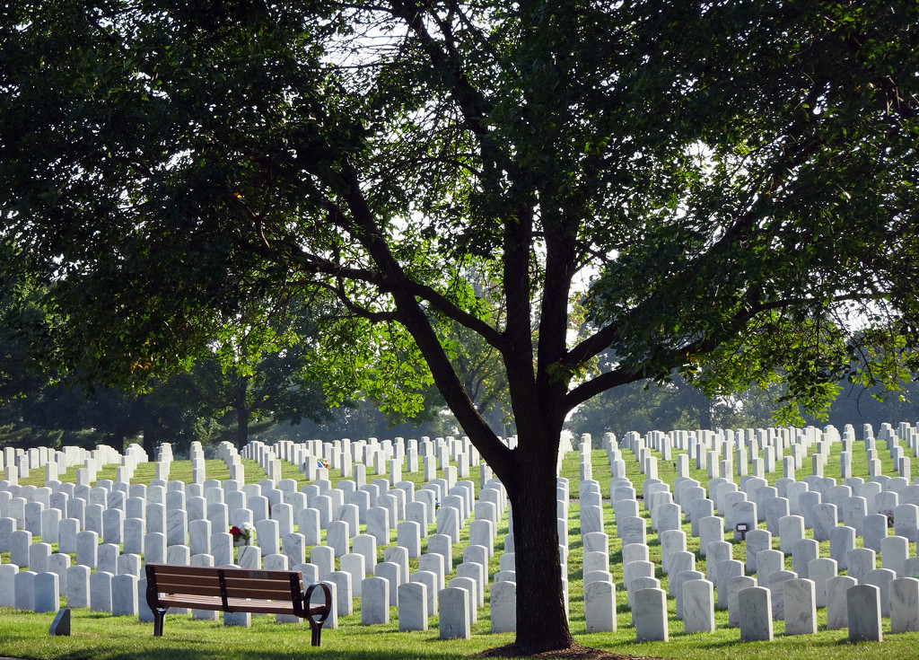 Jefferson Barracks by jae_at_wits_end