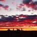 Farina Sunrise by terryliv