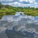 Wakodahatchee Wetlands by danette