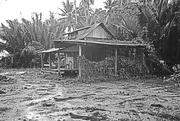 13th Sep 2015 - Malay abandoned homestead
