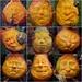 Pumpkin Personalities  by vera365