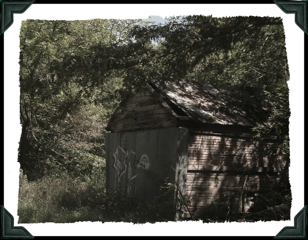 Shed by mcsiegle