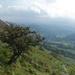 eskdale hillside by callymazoo