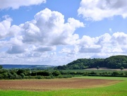 14th Sep 2015 - View towards Pitney Wood from Low Ham