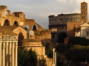 16th Nov 2010 - The Roman Forum_Italy