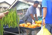 20th Sep 2015 - Fresh fruit and local bean seller