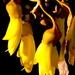Kowhai yellow. by kiwinanna